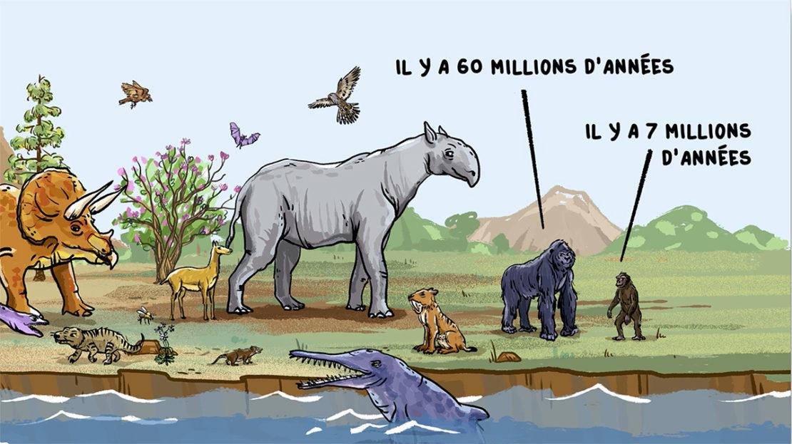 Comment les animaux sont apparus sur terre ?