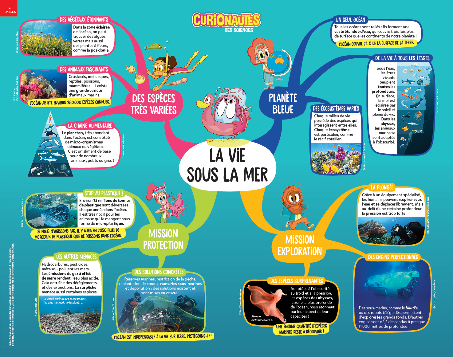Carte mentale vie sous la mer