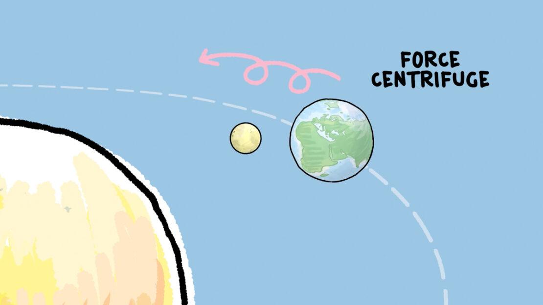 Marée haute ou marée basse : tu as sûrement déjà remarqué que l'océan monte et descend de plusieurs mètres. Avec Curio, Noura va t'expliquer les forces qui provoquent ce mouvement de va-et-vient de la mer.